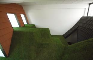 Graslandschap (2008)