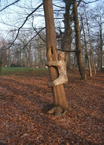 treehugger-008