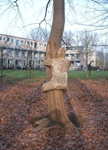 treehugger-009